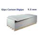 rigips951-120x120